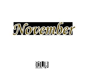 再入荷11月