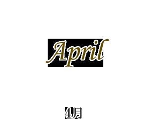 再入荷4月
