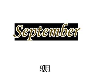 再入荷9月